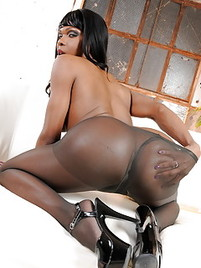 Shemale Gallery Pantyhose Picture